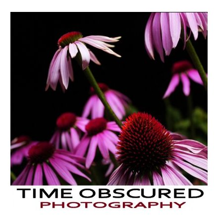 Time Obscured Photography